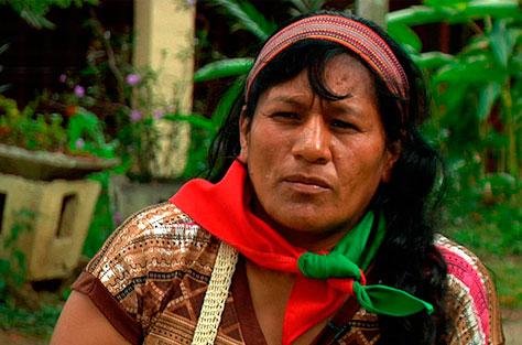guardia-indigena-mini